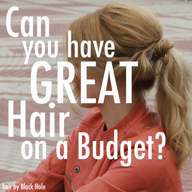 4e31f290b006dbe8eb95 great hair on a budget cover