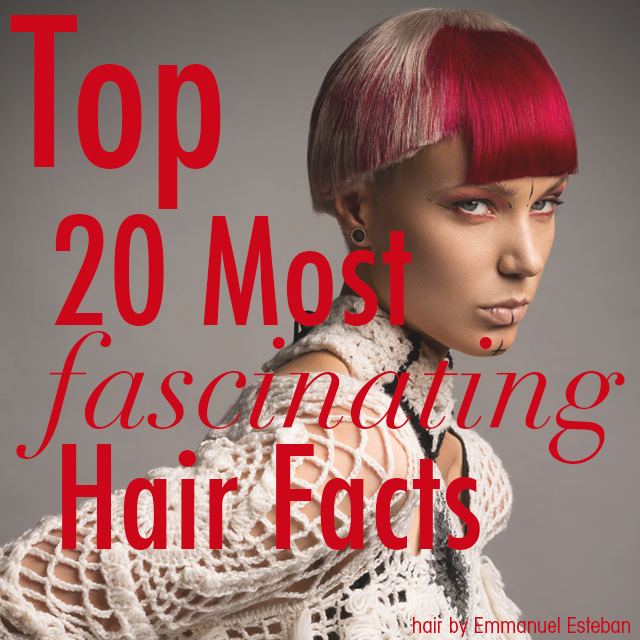 578441e667d782ca0f9b top 20 hair facts