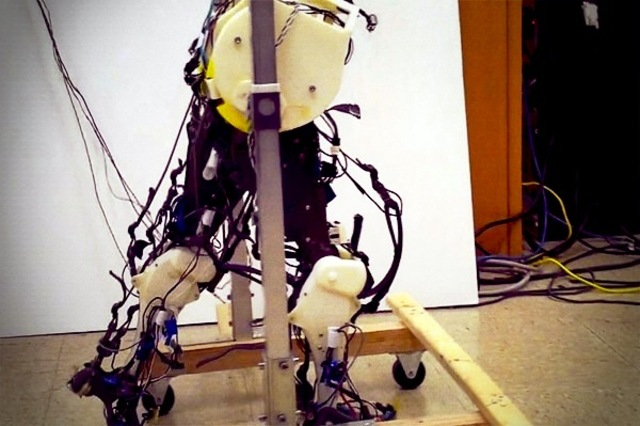 robot human walking