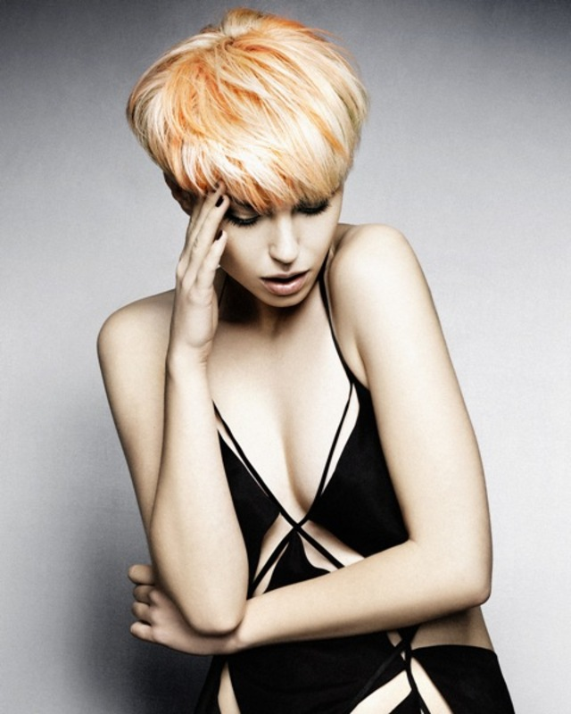 "2014 NAHA Hairstylist of the Year Collection ""The Awakening"" 3"