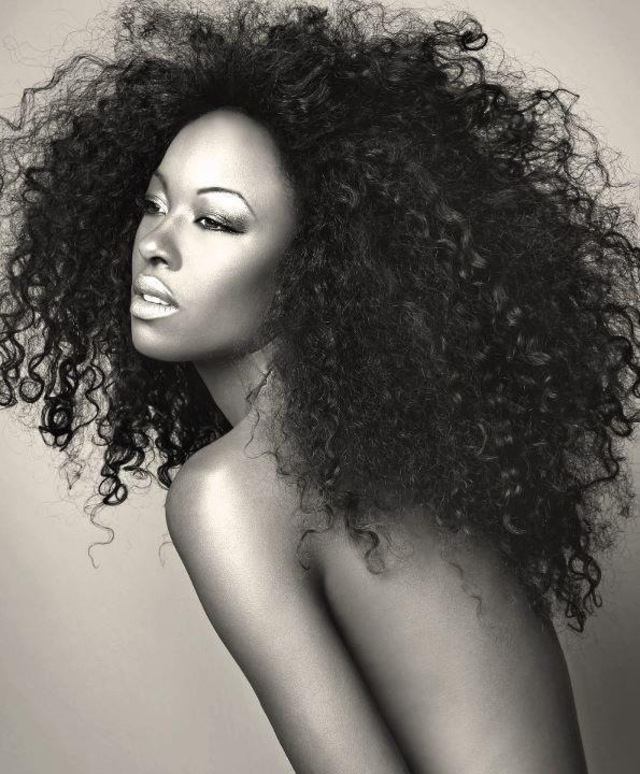 Afro Curly Wig /Ms. Ross