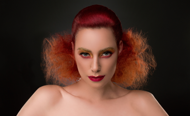 NAHA 2015 Submission Oana 3