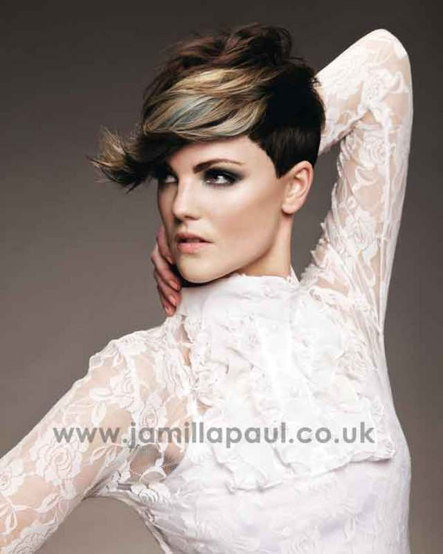 BHA Collection Highlights