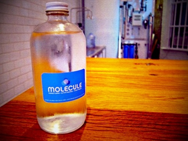 Molecule Cafe Water Only