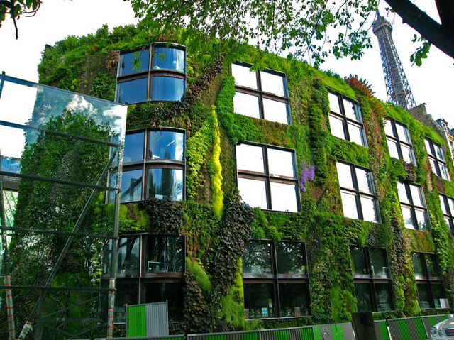 quai_branly_museum_vertical-wall-garden