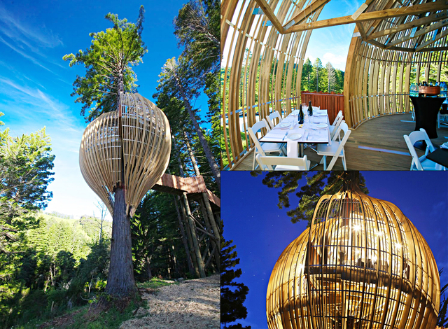 yellow-treehouse-resturaunt-new-zealand