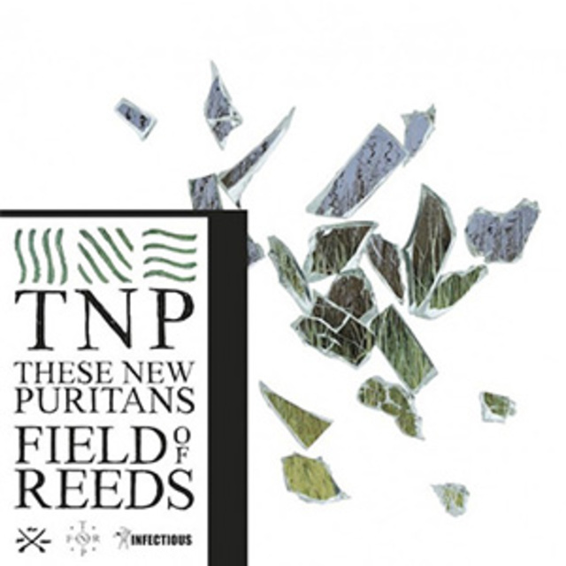 These-New-Puritans-Fields-of-Reeds