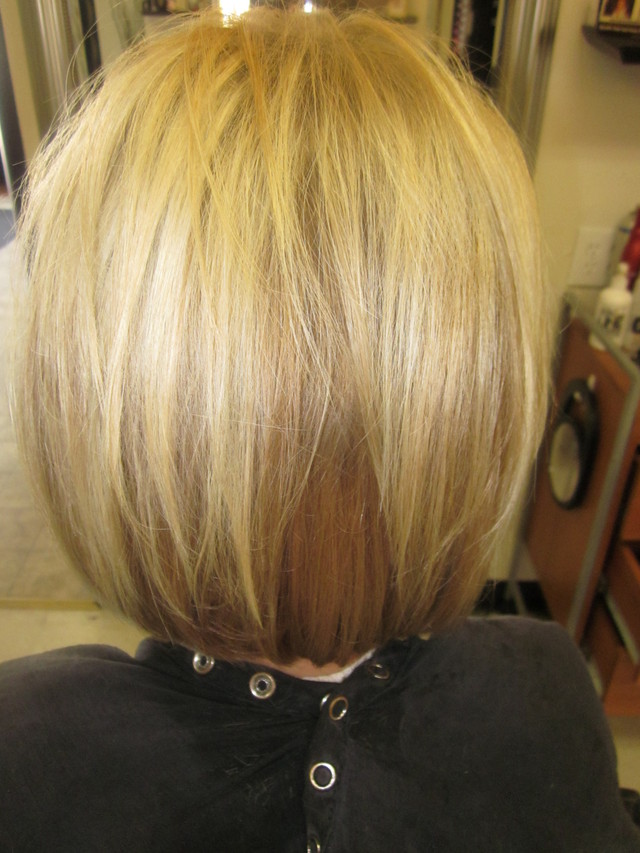 Dimensional Colored Bob