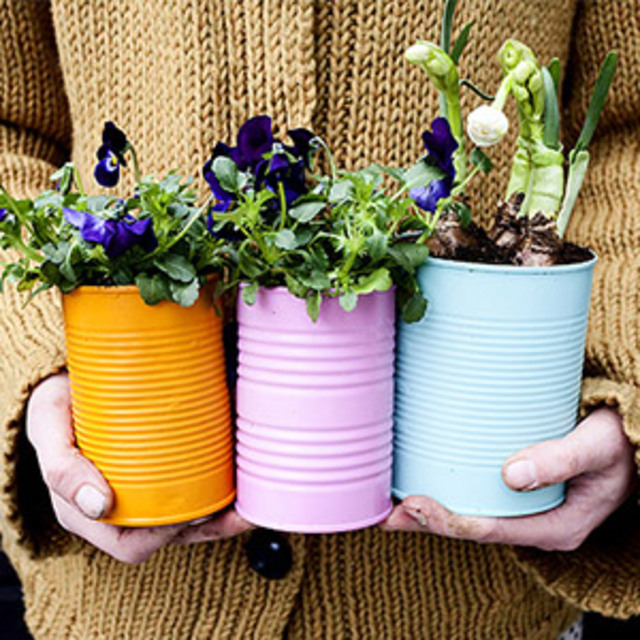 Colorful-Canned-Planters
