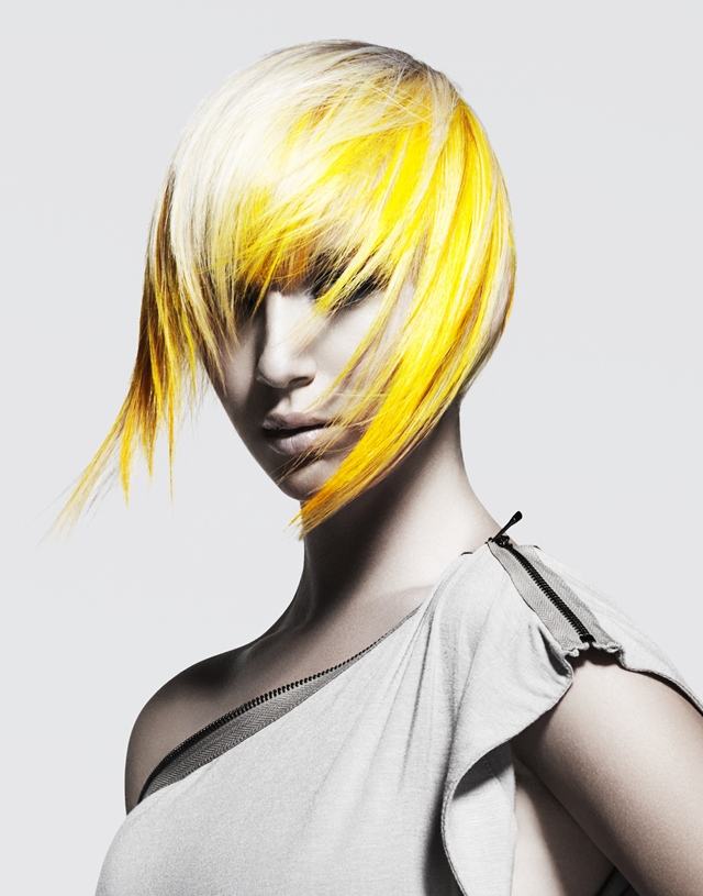 2012 North American Hairstylist Awards Entry/Win for Haircolorist of the Year 1