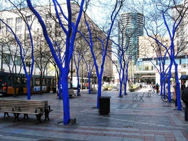 seattle+art+project_blue+trees