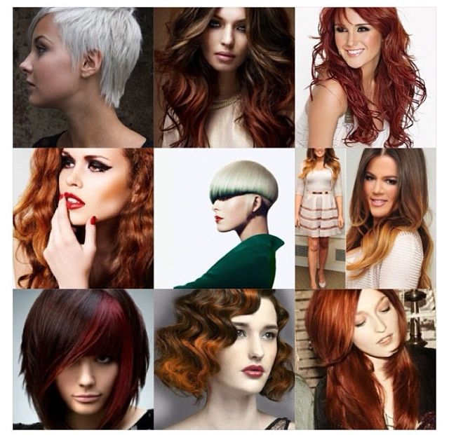 Color & Cuts