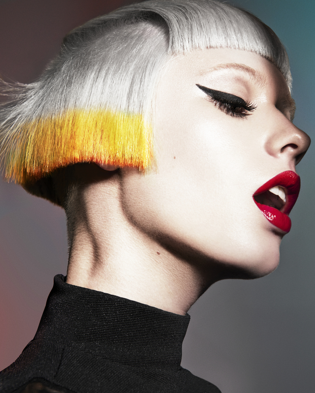 BHA Colour technician collection 2013