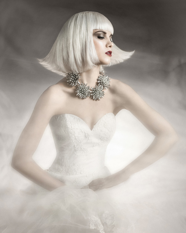 NAHA 2014 Finalist - Hair Stylist of the Year