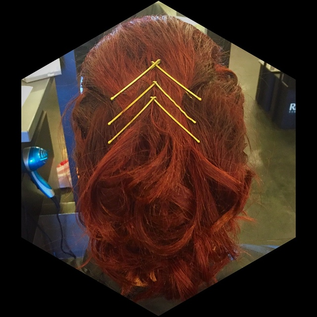 Up do  with Bobby pin design