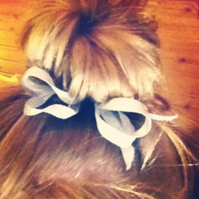 cool bun with bow
