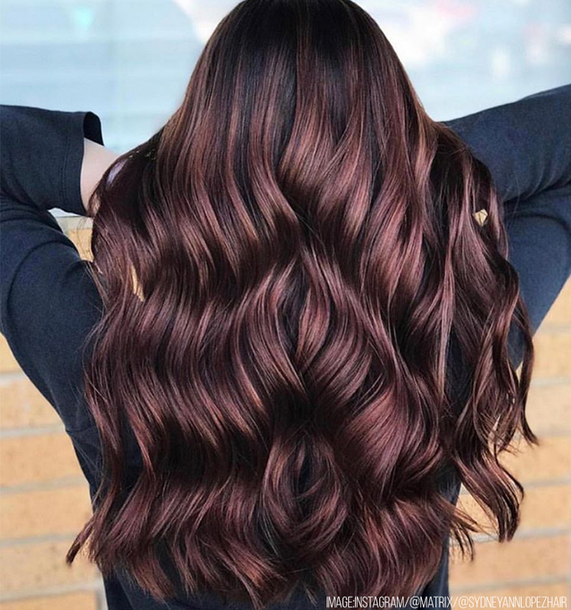 Re sized e198b90447613c4b173d brunette hair trends