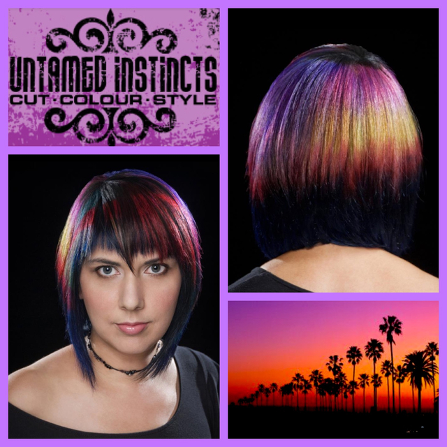 L.A. Woman Sunset Hair Colour
