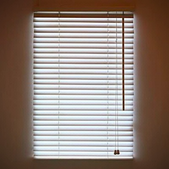 Digital Blinds Create a Window Anywhere!