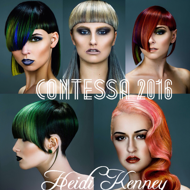 """RARE ELEMENTS"" COLLECTION  2016 Contessa Master Colorist Finslist"