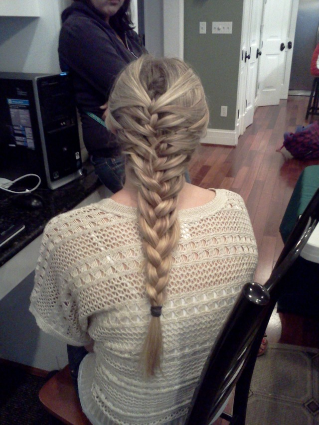 fishtale/french braid