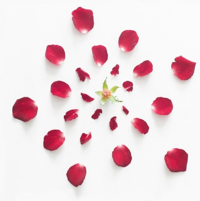 fong-qi-wei-exploded-flowers-7-600x605