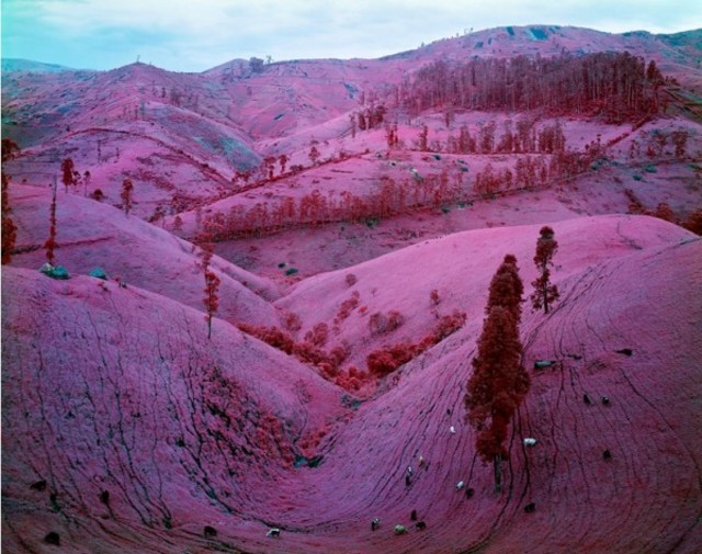 richard-mosse-infra-series-1-600x473