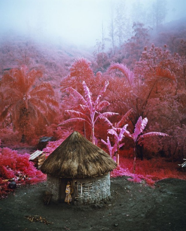 richard-mosse-infra-series-1b-600x747
