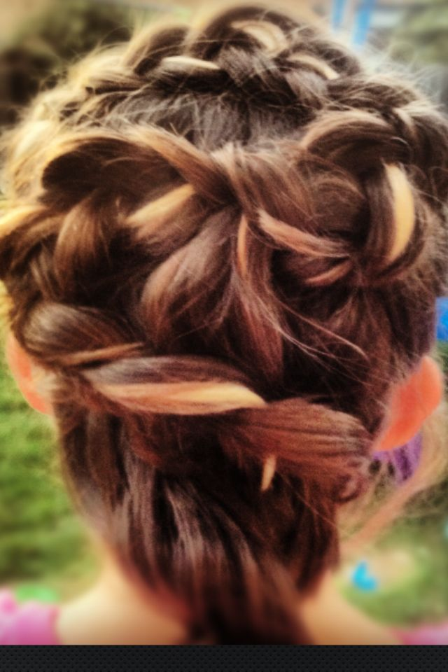 twisted plait